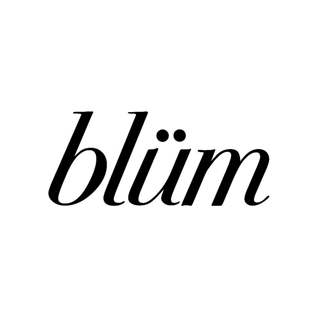 Logo for Blum - Reno
