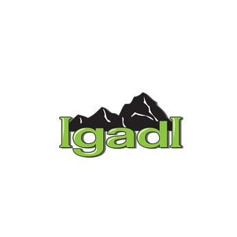 Logo for Igadi - Courtesy Road