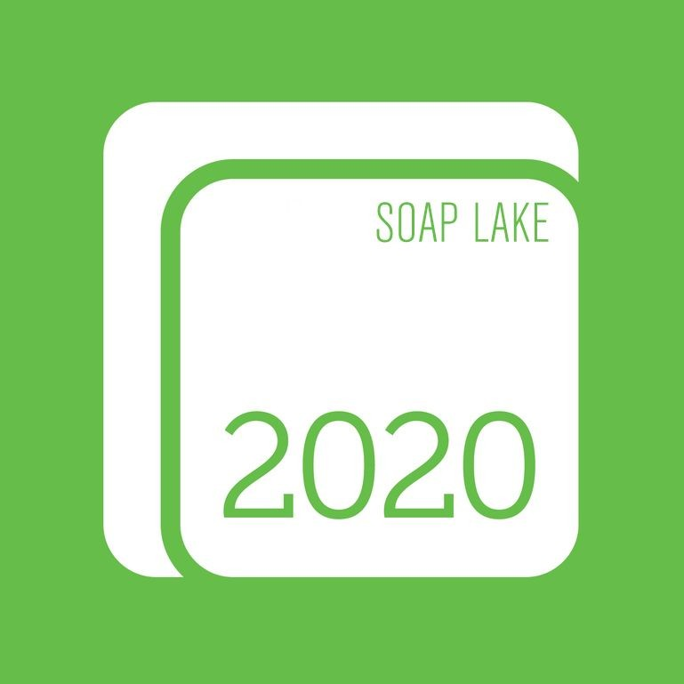 Logo for 2020 Solutions - Soap Lake