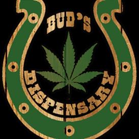 Logo for Buds Ltd