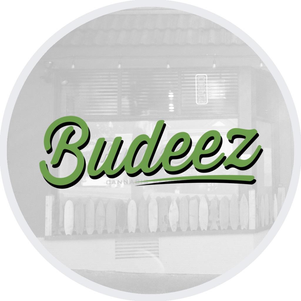 Logo for Budeez