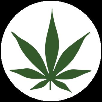 Logo for Mount Vernon Cannabis