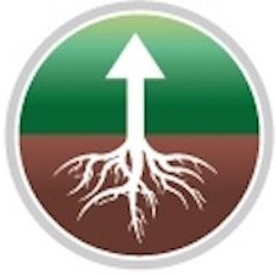 Logo for Rhize Above CBD Store and Hemp Plant Nursery